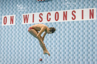 51st Annual Madison West Swim and Dive Invitational  January 30, 2016
